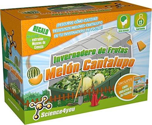 science4you-invernadero-de-frutas-melon-cantalupo-juguete-cientifico-y-educativo