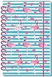 Schülerkalender Flamingo 18/19 - Schulplaner, Schülerplaner: Timer mit Spiralbindung und Prägung -