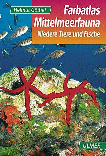 Farbatlas Mittelmeerfauna: Niedere Tiere und Fische