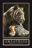 empireposter - Motivational - Greatness - Größe (cm), ca. 61x91,5 - Poster, NEU -
