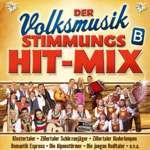 Der Volksmusik Stimmungs Hit-M...