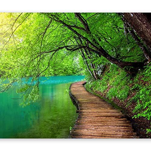murando - Fototapete Landschaft Brücke 400x280 cm - Vlies Tapete - Moderne Wanddeko - Design Tapete - Wandtapete - Wand Dekoration - Natur grün c-A-0073-a-b