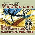 Ugly Buildings,Whores & Politicians [Vinyl LP]
