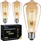 Ampoule LED Edison E27, Ampoule E27 Vintage ST64 4W 400LM Equivalent Incandescente 40W, 2700K Blanc Chaud Rétro Filament Ampo