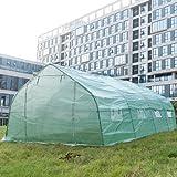 DXP Groß Foliengewächshaus 6x3x2m Gewächshaus Folien Treibhaus Tomatenhaus 18m² (Verbesserte Modelle mit Extra Großem 0,7 mm Rohrdicke) EHF06