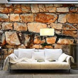 murando - Vlies Fototapete 500x280 cm - Größe Format XXL- Vlies Tapete - Moderne Wanddeko - Design Tapete - Steine Stein 3D f-A-0495-x-b