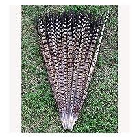 BulzEU 10Pcs Pheasant Tail Feathers Craft Decoration