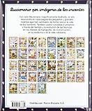 Image de Diccionario por imagenes de los inventos(+5 años) (Diccionario Por Imagenes/ Picture Dictionary)