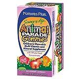 Natures Plus Animal Parade Gummies, Assorted, 50Tabletteten