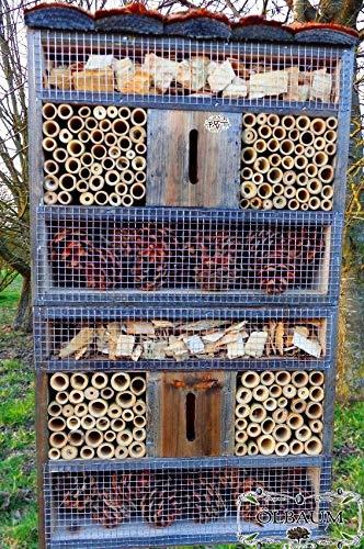 ÖLBAUM insektenhotel, mit Holzrinde-Naturdach, FDV-Host-OS schwarz anthrazit dunkelgrau Holz Nistkästen biologische Garten