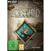 Icewind Dale: Enhanced Edition (PC)
