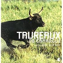 Pochoir taureau Provence feuille 94x121mm