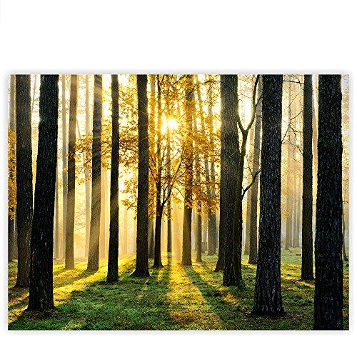 leinwandbild-100x75-cm-premium-leinwand-bild-wandbild-kunstdruck-wanddeko-wand-canvas-sunlight-fores