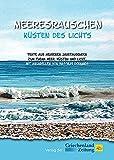 Meeresrauschen - Küsten des Lichts: Texte aus mehreren Jahrtausenden zum Thema Meer, Küsten und Licht, mit Aquarellen von Wassilis Dornakis -