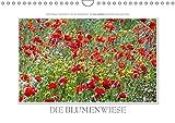 Emotionale Momente: Die Blumenwiese. (Wandkalender 2019 DIN A4 quer): Ingo Gerlach GDT hat auf der holländischen Insel Texel eine Blumenwiese in allen ... (Monatskalender, 14 Seiten ) (CALVENDO Natur)