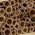 Insektenhotel für Bienen und Insekten von Bee Proof Suits - Du und dein Garten