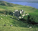 The Irish Image Collection / Design Pics – Clifden Castle Co Galway Ireland; 19Th Century Gothic Revival Style Castle Photo Print (43,18 x 33,02 cm)