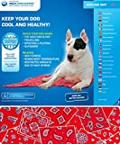 Aqua Coolkeeper Hunde Kühlmatte