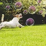 James Marketing Schecker Hunde-Seifenblasen-Kanone Seifenblasenmaschine elektrisch