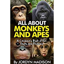 All About Monkeys and Apes - Gorillas, Orangutans, Baboons, Chimps, Baboons, Gibbons and More!: Another 'All About' Book in the Children's Picture and ... Gorillas and Apes) (English Edition)