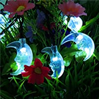 Alimentato da energia solare luci stringa 20LED Lanterna decorativo esterno impermeabile Natale luci da giardino,blu - Luminoso Perline Blu