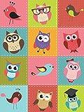 Fototapete Tapete Wandbild Welt-der-Träume | Vögel und Eulen Patchwork | P4A (254cm. x 184cm.) | Photo Wallpaper Mural 10376P4A-MS | Kinder Kinderzimmer Baby Bunt Kleine Vogel Vögel