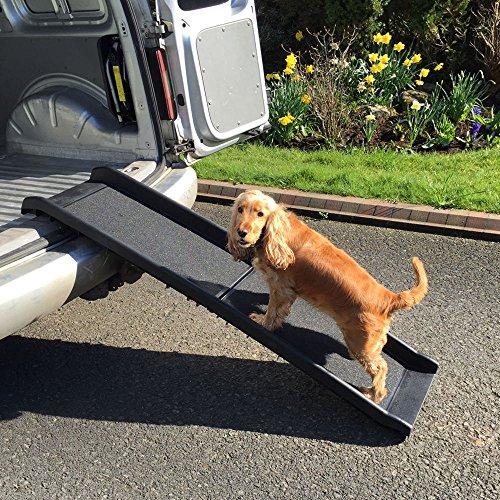 RayGar, rampa pieghevole per cani, si piega in due, in plastica leggera, da viaggio, facile da trasportare in auto e in furgoncini, con superficie antiscivolo, colorenero