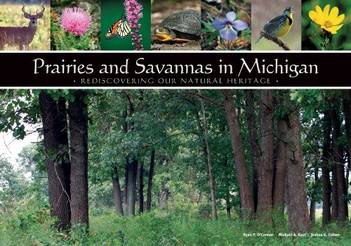 Prairies and Savannas in Michigan: Rediscovering Our Natural Heritage by Ryan O'Connor (2009-04-02)