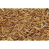 5 kg Dawn Chorus Dried Mealworms for Wild Birds