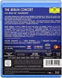 """The Berlin Concert. Live From The """"Waldbühne"""" [Blu-ray] [Import anglais]"""