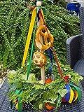 Richtkranz mini als Tisch Deko oder Geschenk für Richtfest mit Ständer/ohne Ständer z.b.als Geschenk statt Blumen