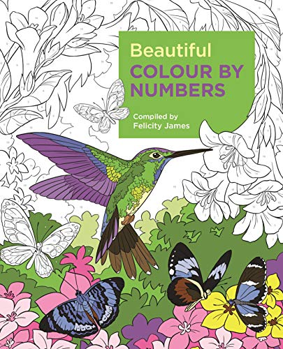 Creative Colour by Numbers por Arcturus Publishing