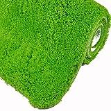 WohnDirect sehr Flauschige Badematte - Rutschfester Badteppich - Waschbar, Microfaser, Duschvorleger, Badezimmerteppich - 60x100cm - Farbe: GRÜN