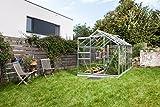 Gartenwelt Riegelsberger Gewächshaus Venus - Ausführung: 6200 ESG 3 mm Alu, Fläche: ca. 6,2 m², mit 2 Dachfenster, Sockel: 1,92 x 3,17 m