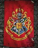 Harry Potter \ Hogwarts Flag (Flagge)–40x 50cm–Zeigt/Poster