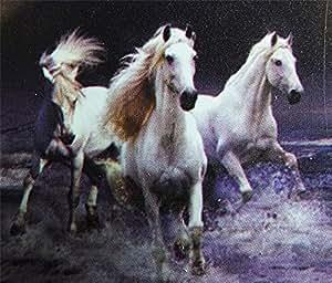 Chevaux Couvre-lit XXL Horses (220x 240) cm Plaid neuf