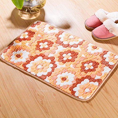hanbaozhou Flower Indoor Mats for Entryway Extra Soft Water Absorbent Bath Rugs for Bathroom Kitchen Living Room -