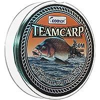 Lixada Líneas de Pesca de Mar Hilo de Nylon Monofilamento 0,1 mm/0,2 mm/0,3 mm/0,4 mm/0,5 mm/0,6 mm/0,7 mm