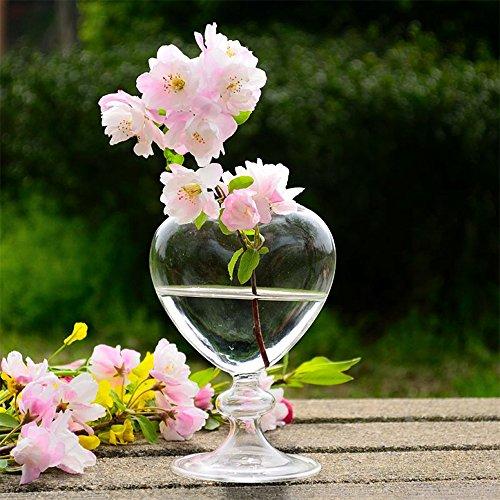 Artlass Confezione da 2 vasi in vetro a forma di cuore, per piante da esterno ed interno