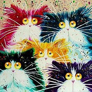 Dipingi per numero Kit, Dipinto ad olio Fai da te Disegno Astratto Testa di gatto Tela con pennelli Decorazioni Decorazioni Regali - Frameless 16x20 pollici