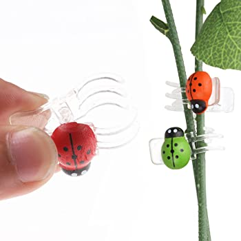Tiaobug 30 Pack Cute Orchid Clip Butterfly Dragonfly Design Plant