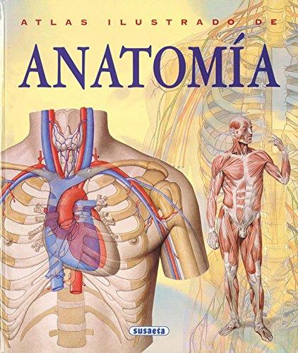 Atlas ilustrado de anatomia (tapa dura)