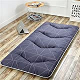 Best King's Folding Beds - hxxxy Folding Tatami floor mat,Portable sleeping pad Queen-king Review