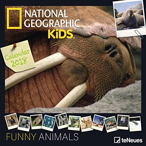 2018-national-geographic-funny-animals-calendar-teneues-grid-calendar-photography-calendar-30-x-30-c