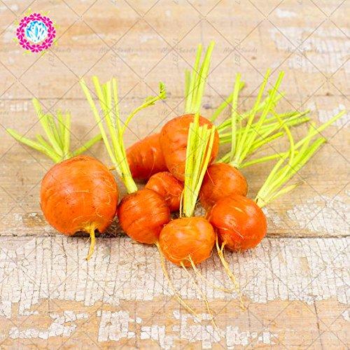 300pcs ronde carotte Semences non-OGM sain biologique de fruits légumes Sweet Seeds et sain Bonsai plante pour jardin