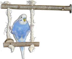 Vogelgaleria Vogelschaukel aus Naturholz   Schaukel als Wellensittich Spielzeug   Swing Spaß für Nymphensittich