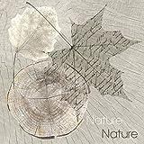 Serviettes Napkins 33x 33cm 20ST. packg. serviettage feuilles bois nature abstrait...
