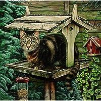 LRG. Henrietta il gatto sul tavolo, l' Uccello Stampa da Geoff Tristram, Gatto Dimensioni immagine circa 30,5x 30,5cm circa