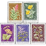 sellos para coleccionistas: soviética-Unión 3988-3992 (completa.edición.) matasellado 1972 plantas medicinales