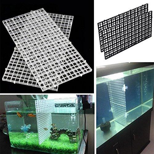 ZAK168 Isolierplatte für Aquarien, mit 2 Trennfächern, Kunststoff, transparent, Schwarz